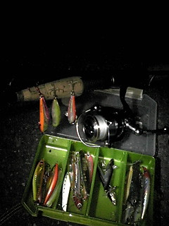 春の夜釣り in TokyoBay